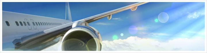 Uçuş Rehberi Online Check-in