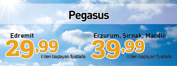 Pegasus yurtiçi yeni hatlar